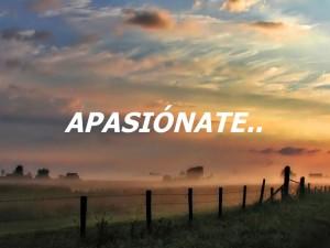 apasionate por lo que haces