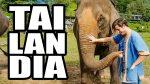 Tailandia: Cómo me descubrí a mi Mismo